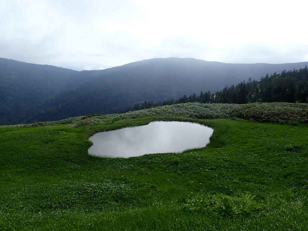 会津駒ヶ岳の池塘