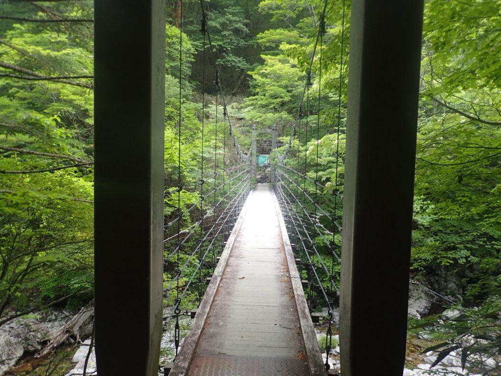 大台ヶ原山のシオカラ谷のつり橋
