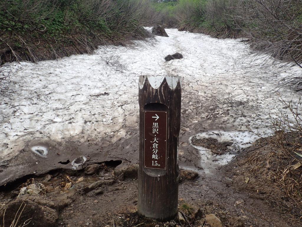 妙高山登山道の長助池分岐の雪渓