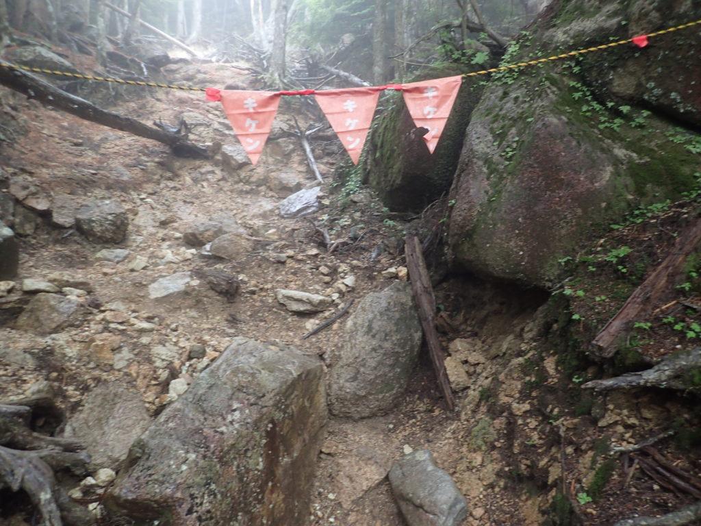 瑞牆山登山道のキケン印