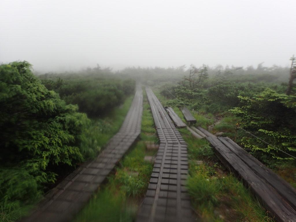 早池峰山の山頂付近の木道