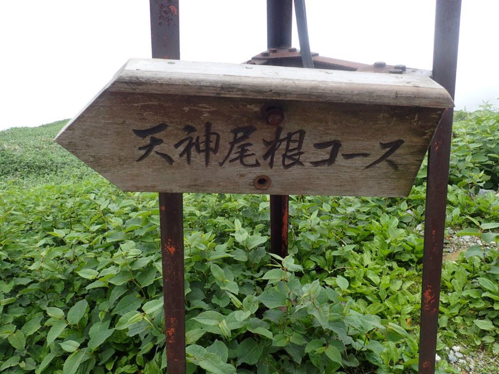 谷川岳の天神尾根コースを示す道標