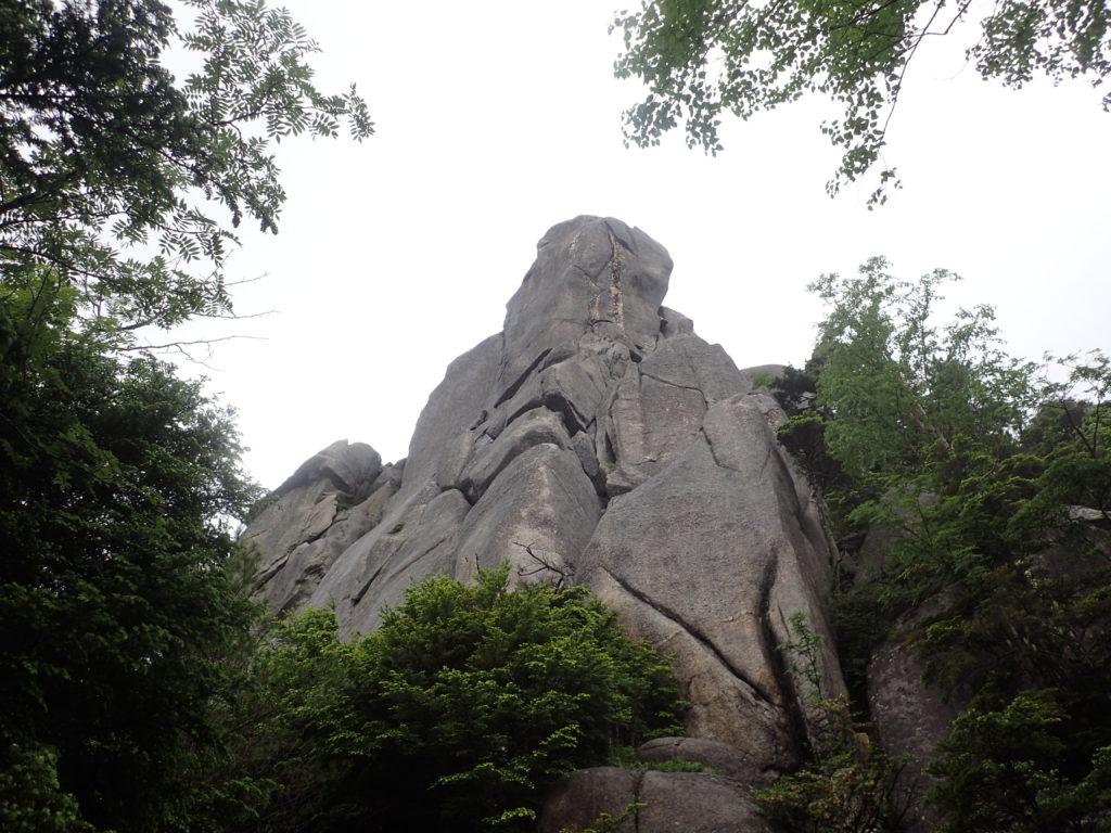 瑞牆山登山道から見上げる大ヤスリ岩