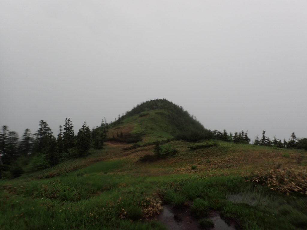 苗場山登山道から見る龍ノ峰