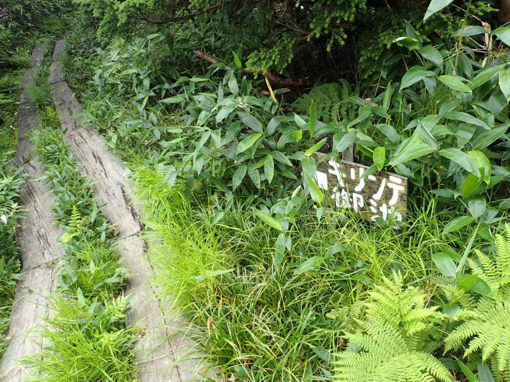 会津駒ヶ岳のキリンテ方面へ続く木道
