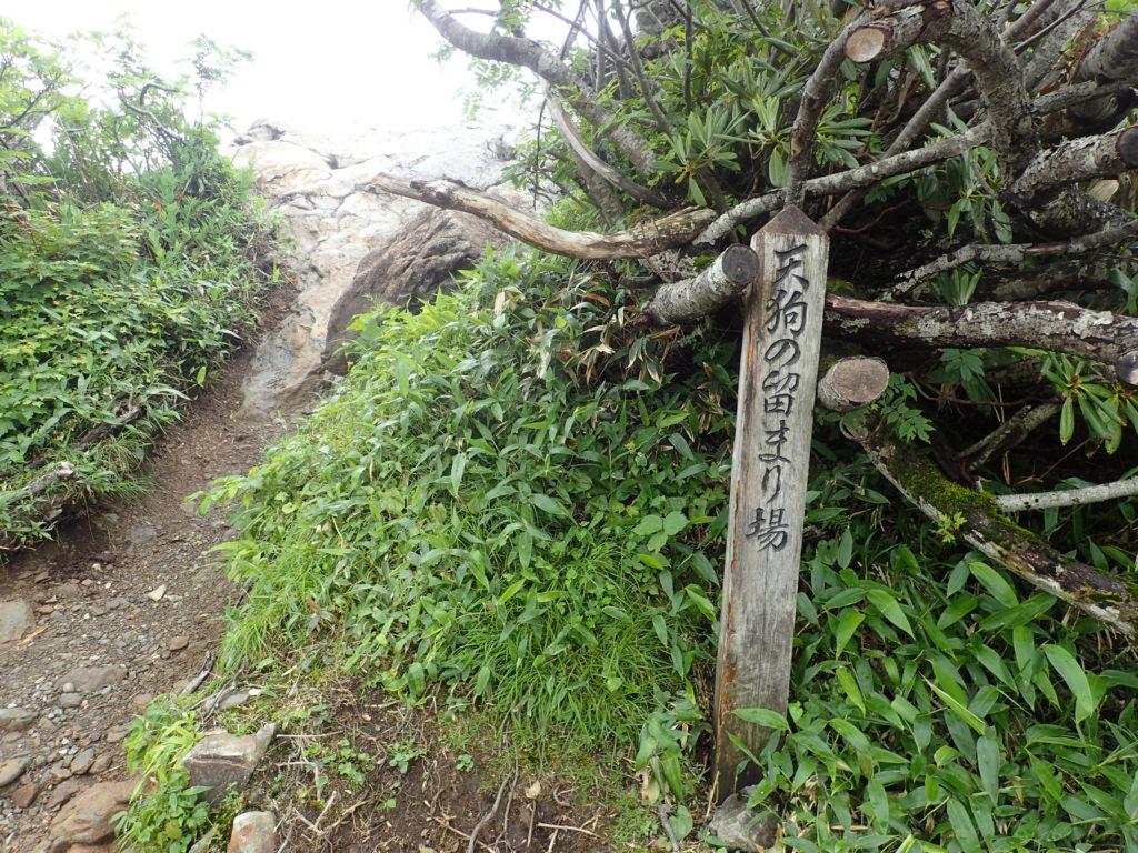 谷川岳の天狗の留まり場