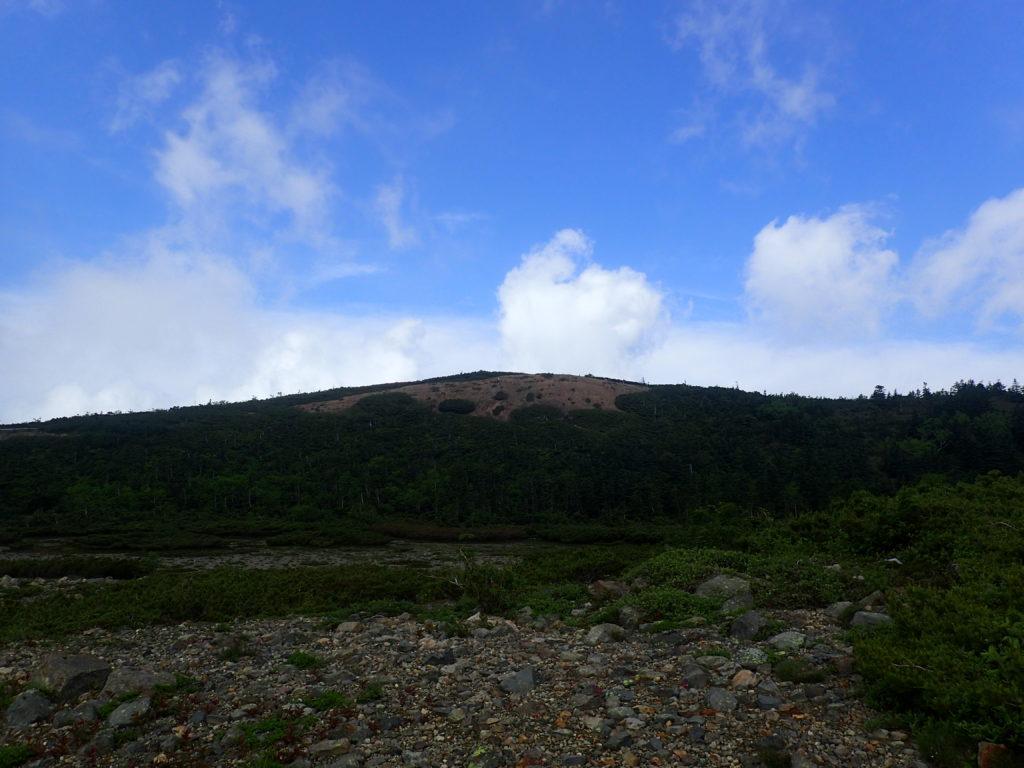 本白根遊歩道の最高地点を遠方から撮影