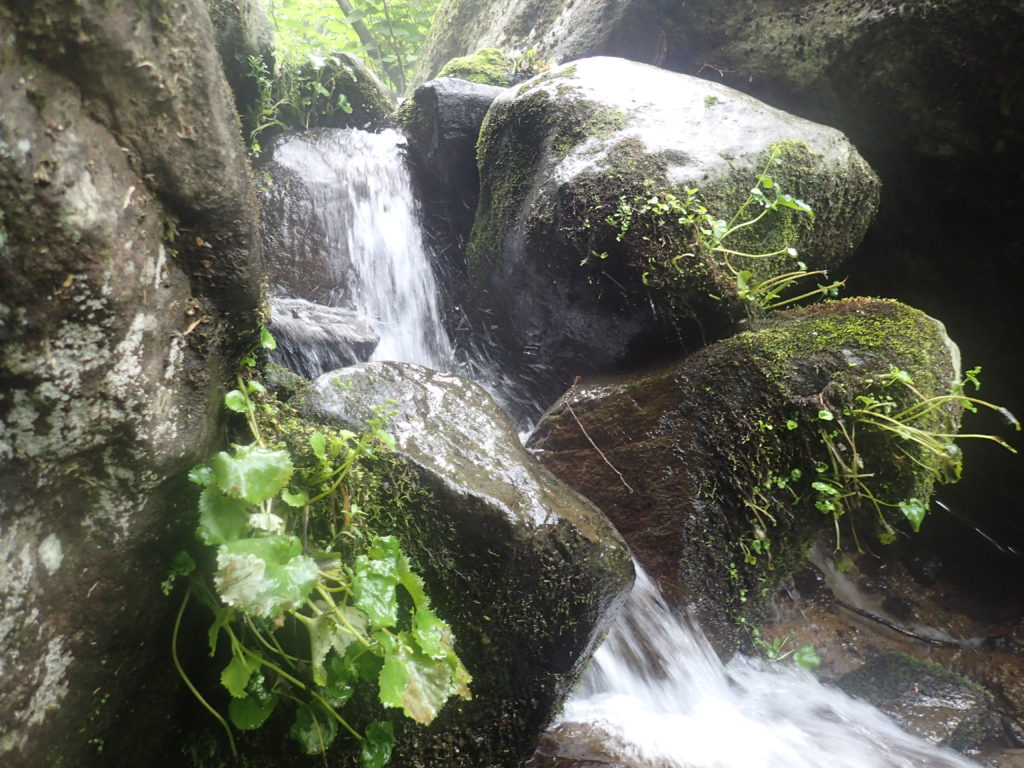 火打山と妙高山の登山道の黒沢橋近くの滝