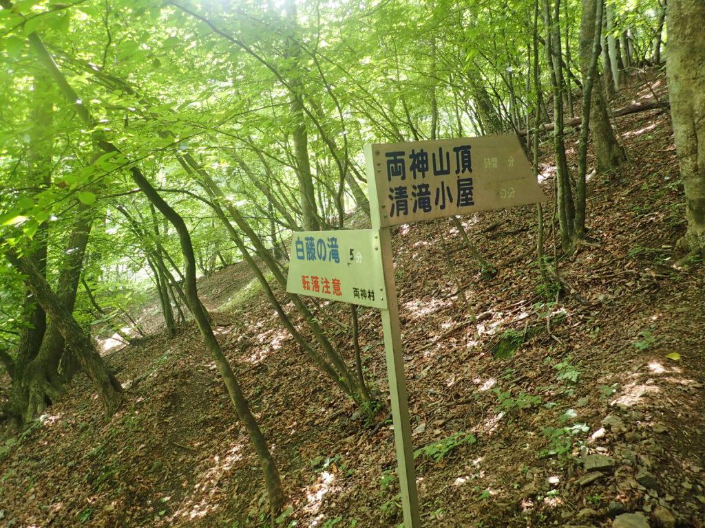 両神山登山道の白藤の滝への分岐