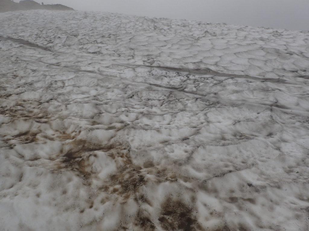 至仏山の登山道の雪渓