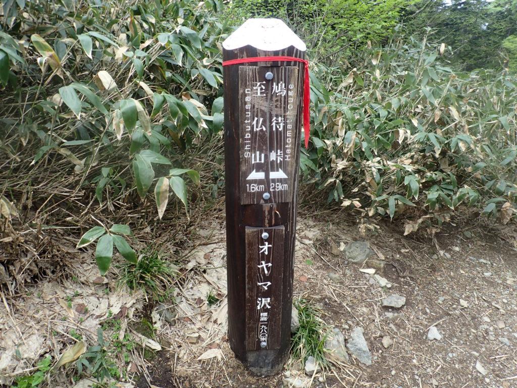 至仏山の登山道のオヤマ沢の道標