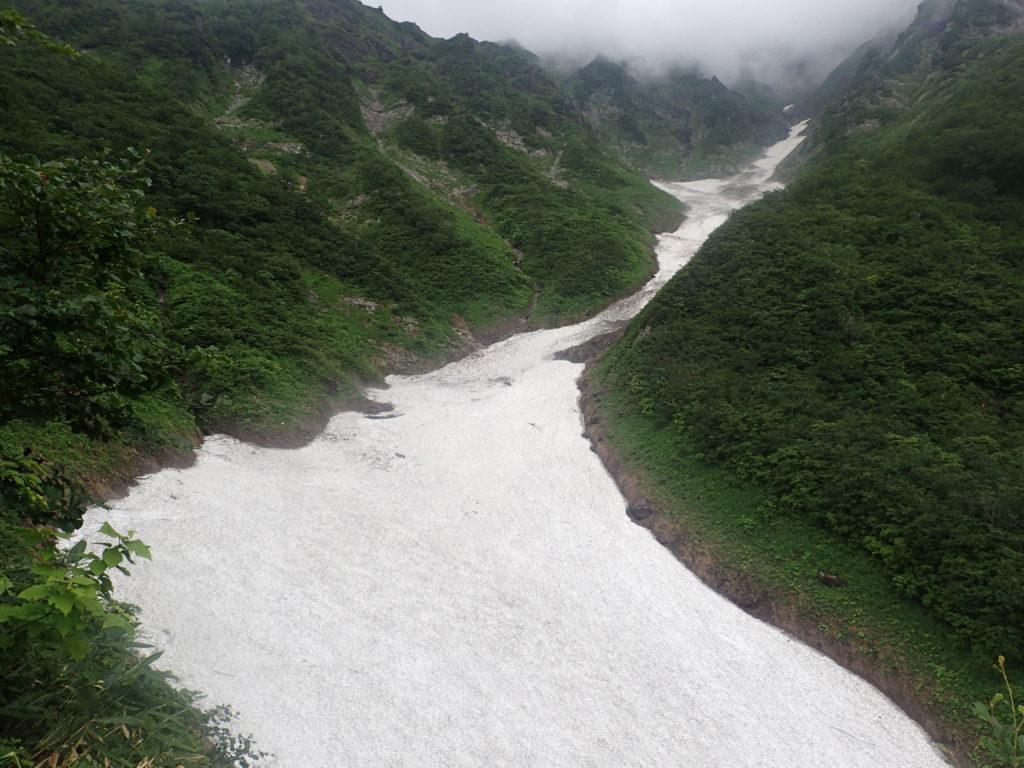 谷川岳の巌剛新道からみる雪渓