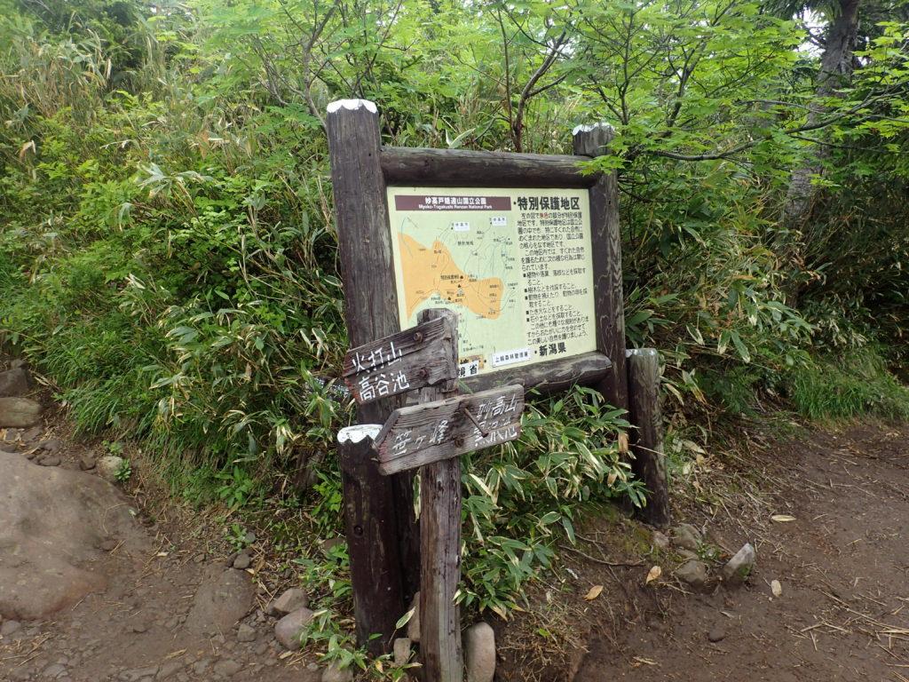 火打山・妙高山登山道の富士見平