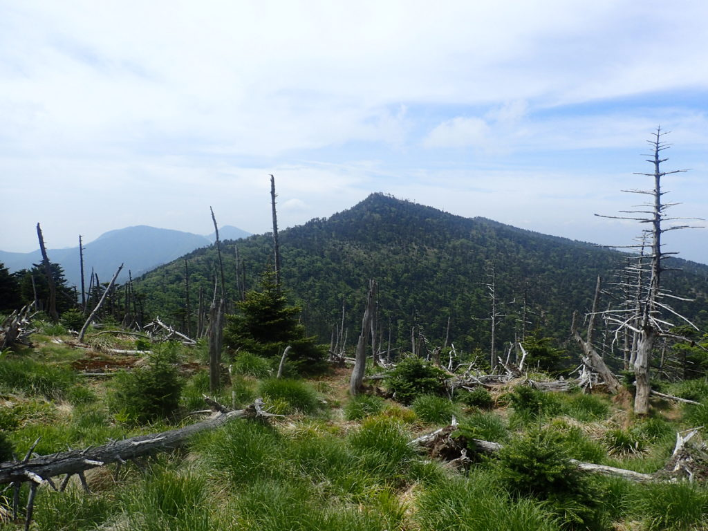 大峰山の弥山から見る八経ヶ岳