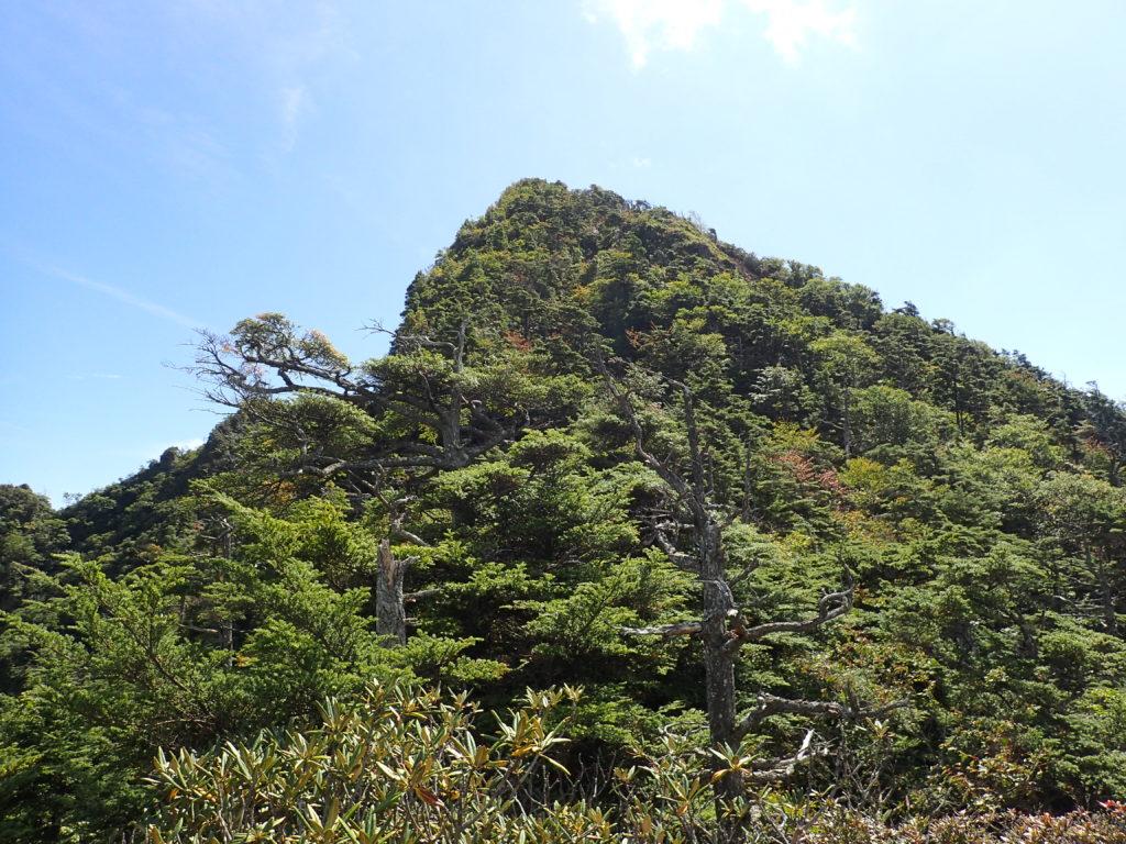 不動沢のコル方面から見る鋸山