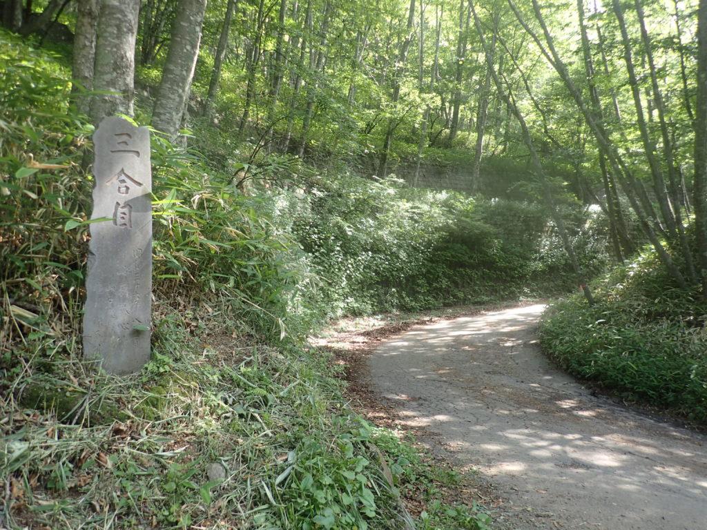 男体山の登山道のアスファルト区間