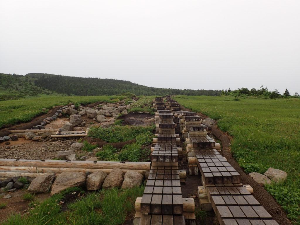 苗場山の木道