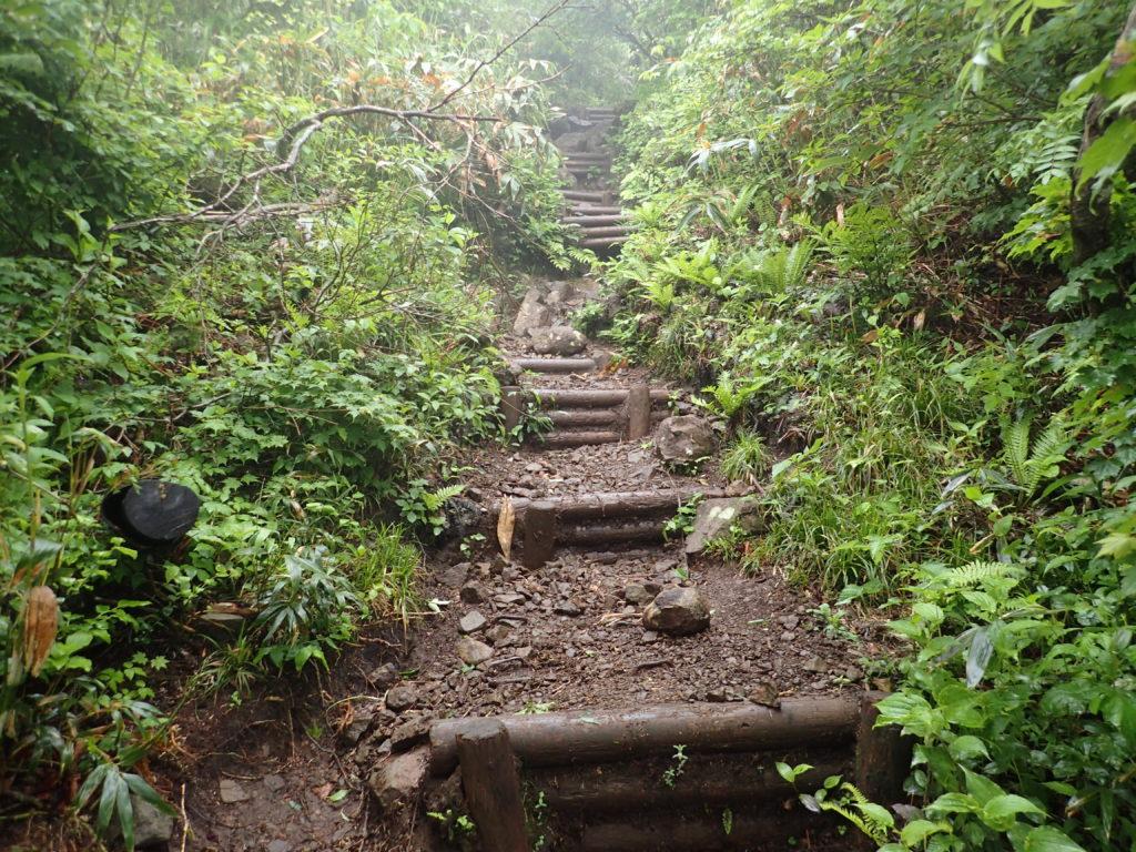 荒島岳のモチガカベ