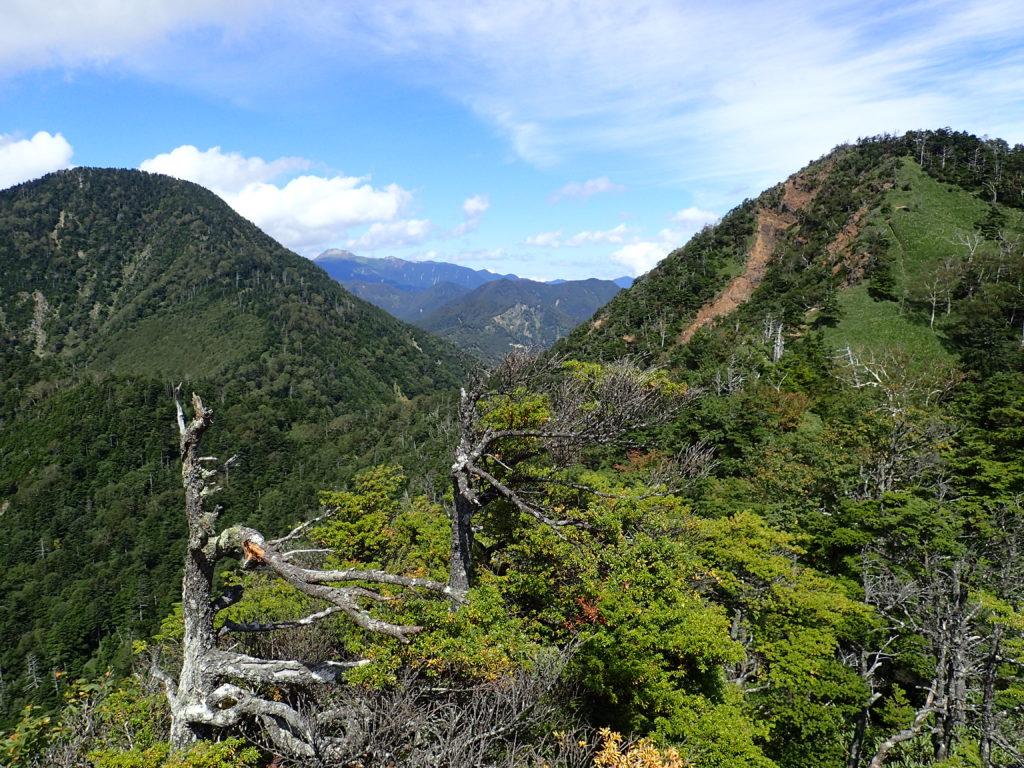 六林班峠へ向かう登山道から見る皇海山と鋸山