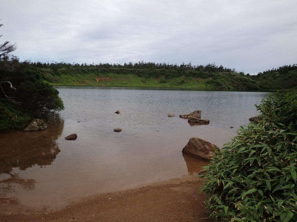八幡平のガマ沼