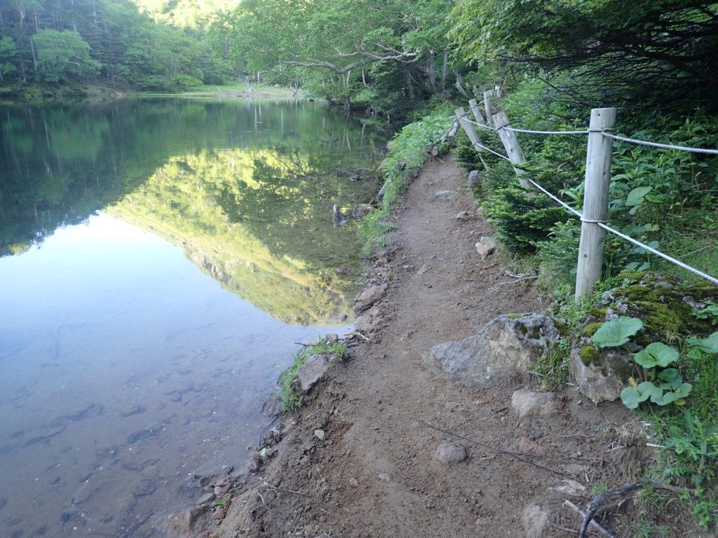 日光白根山の弥陀ヶ池とすぐその脇を通る登山道