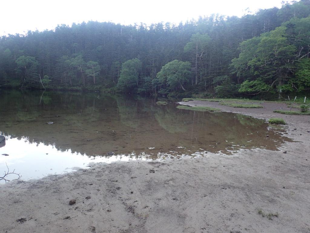 日光白根山の弥陀ヶ池の湖畔