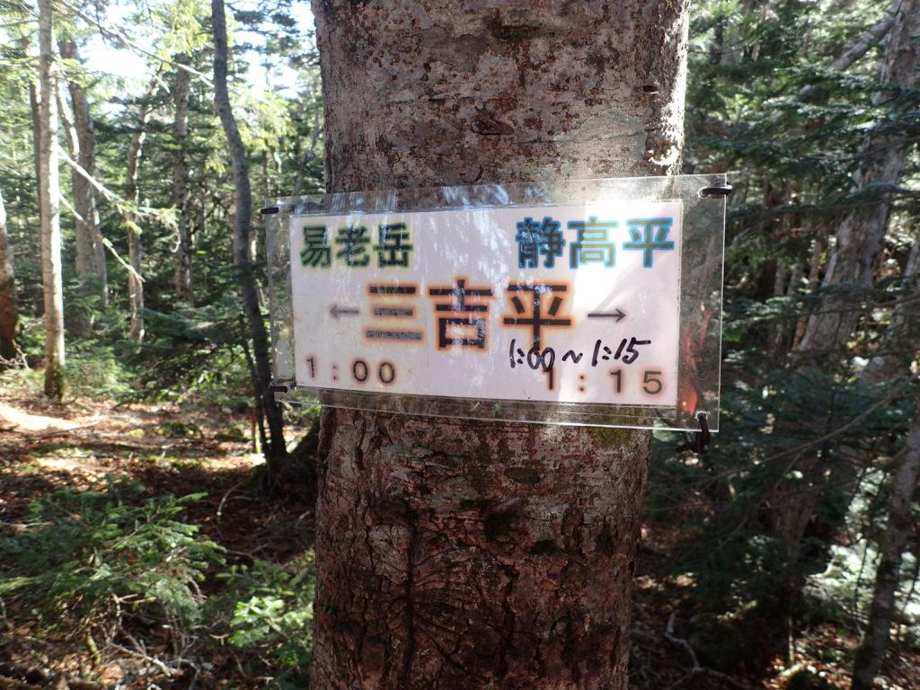 光岳登山道の三吉平