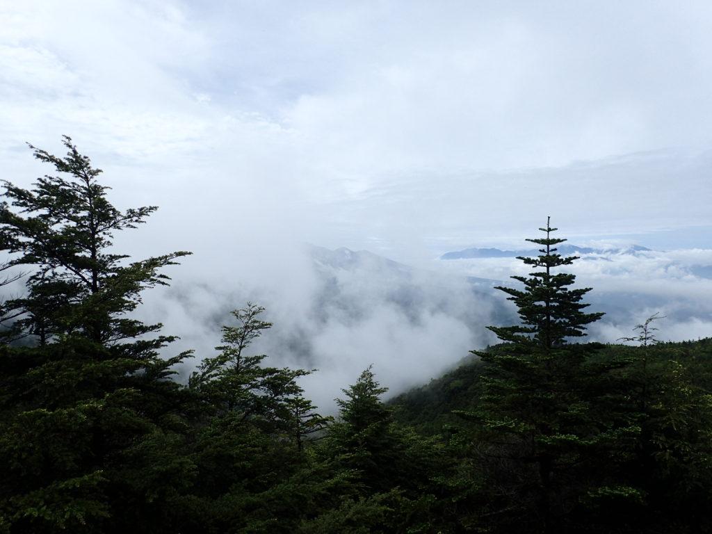 蓼科山女乃神茶屋ルート登山道から見る雲