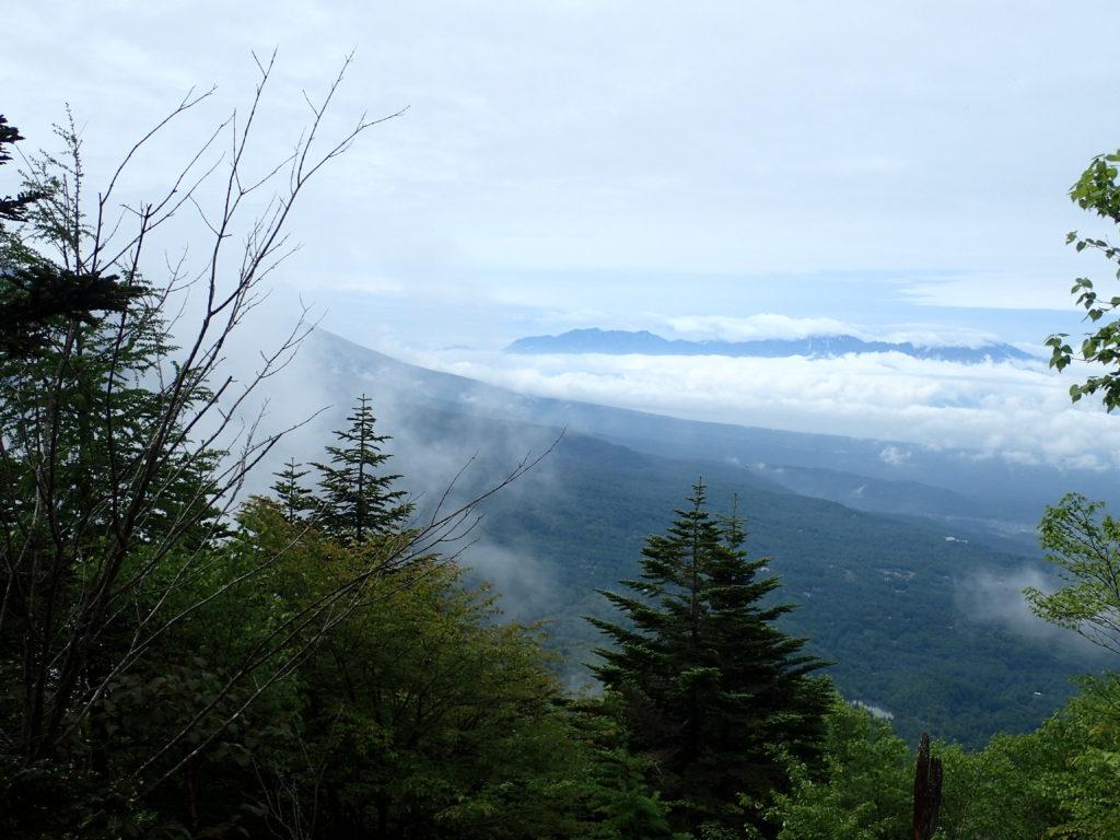 雲の上に稜線を出す南アルプス