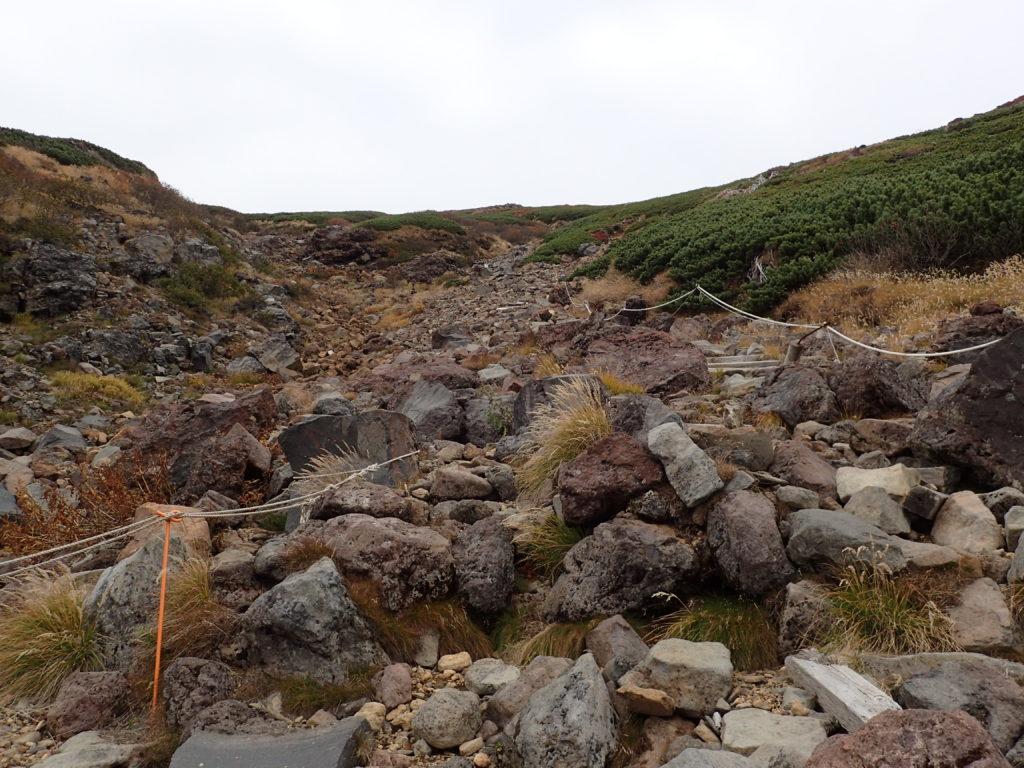 御嶽山の王滝ルート登山道