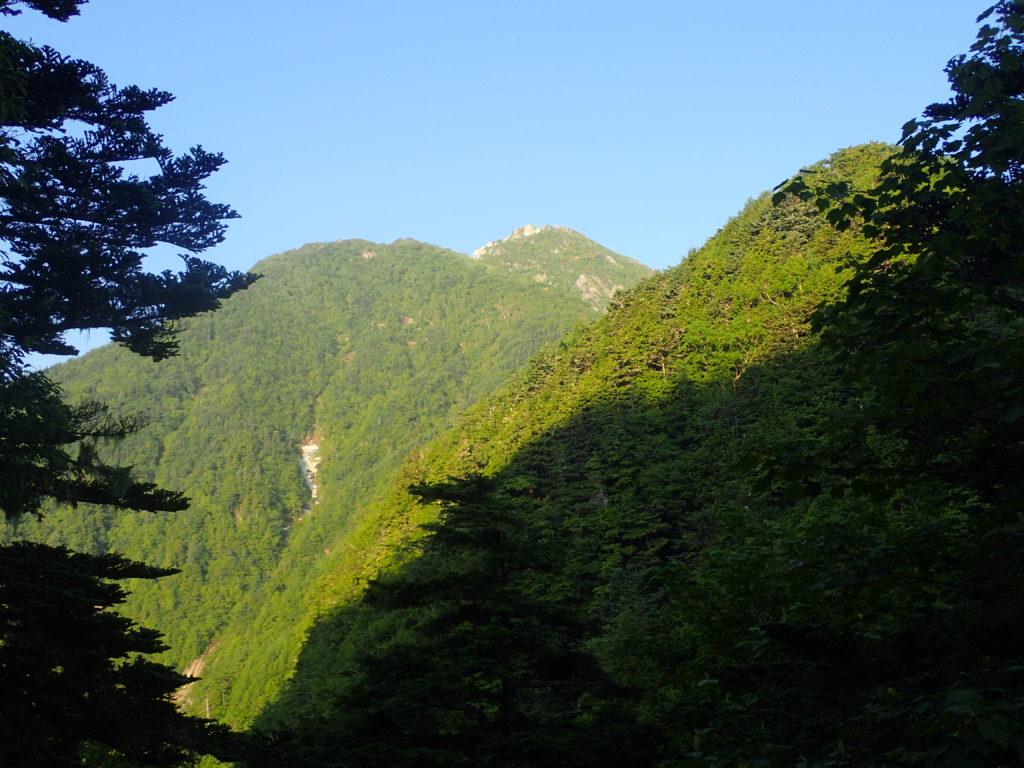 甲斐駒ヶ岳黒戸尾根ルートから見る山頂方面