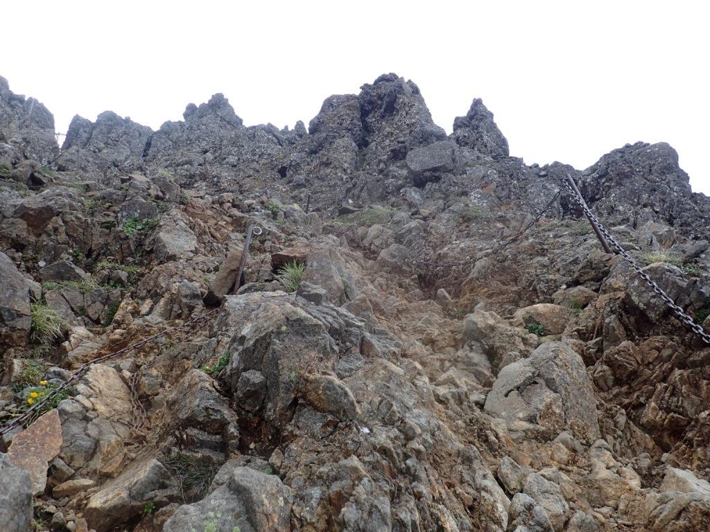 赤岳へと向かう文三郎尾根の登山道