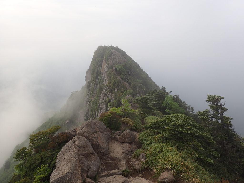 石鎚山の天狗岳から先のピーク