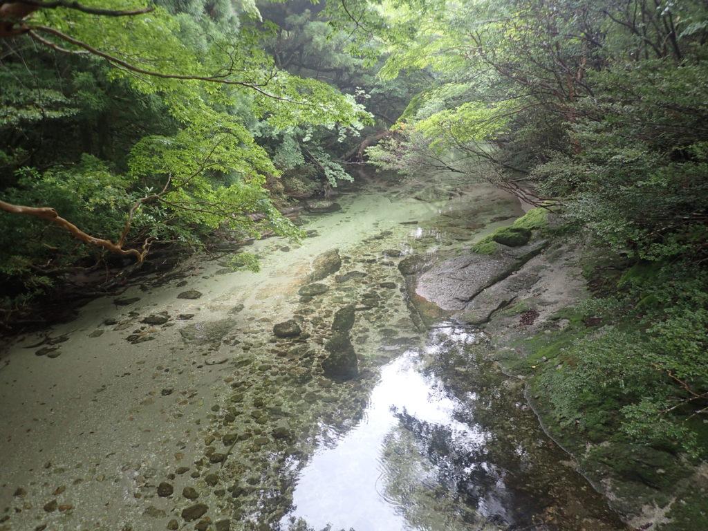 淀川小屋の脇を流れる淀川