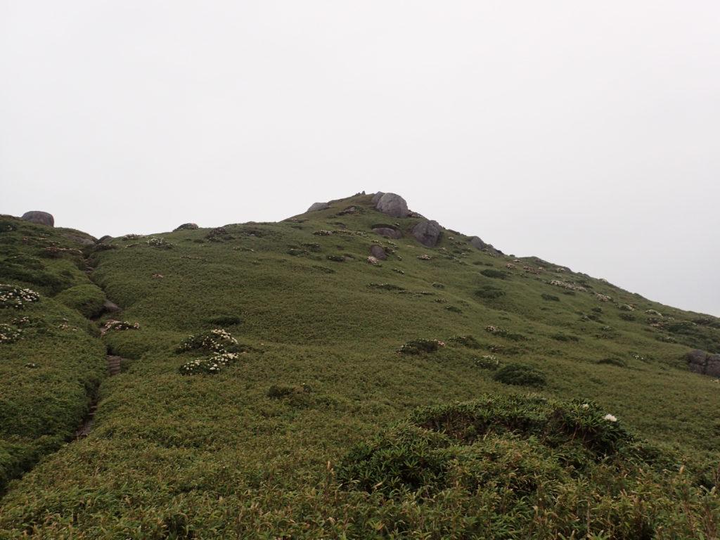 下山中に振り返る宮之浦岳の山容