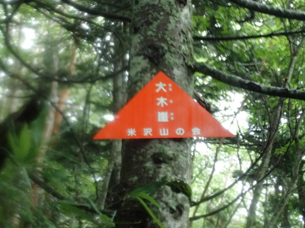 吾妻山(西吾妻山)の若女平ルートの大木崖