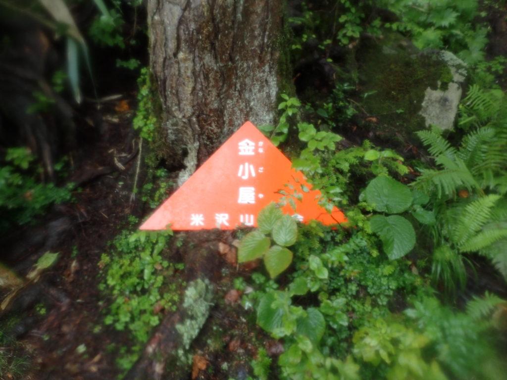 吾妻山(西吾妻山)の若女平ルートの金小屋