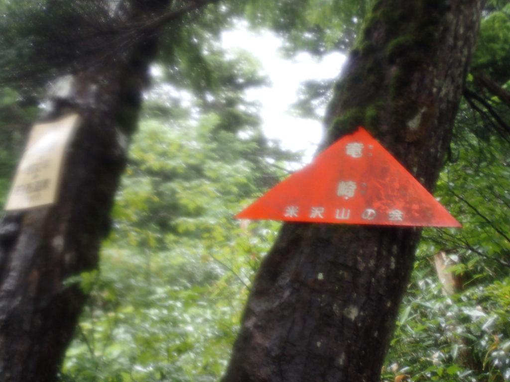 吾妻山(西吾妻山)の若女平ルートの竜崎