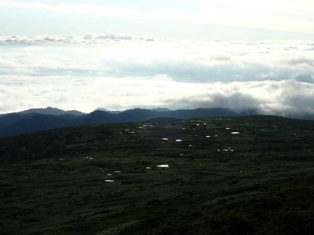 月山の池塘群と雲海