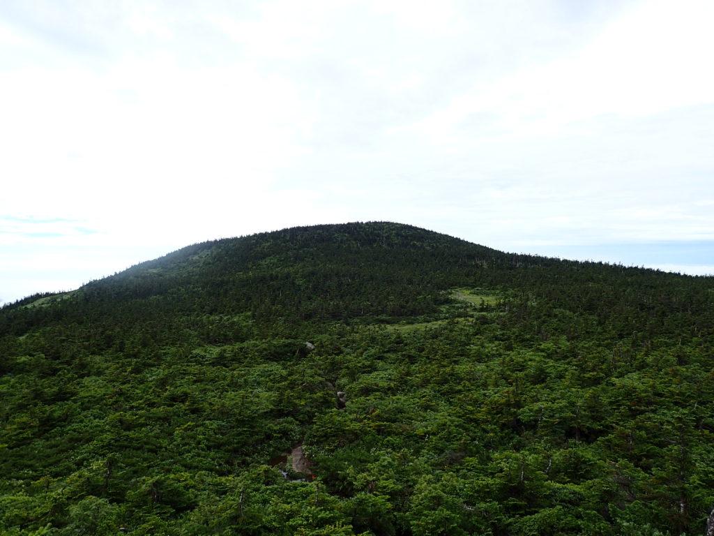 西吾妻山の山頂方向
