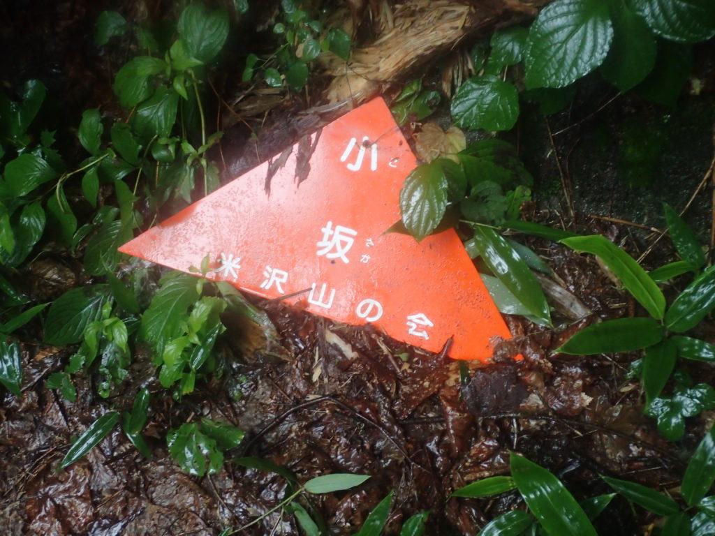 吾妻山(西吾妻山)の若女平ルートの小坂