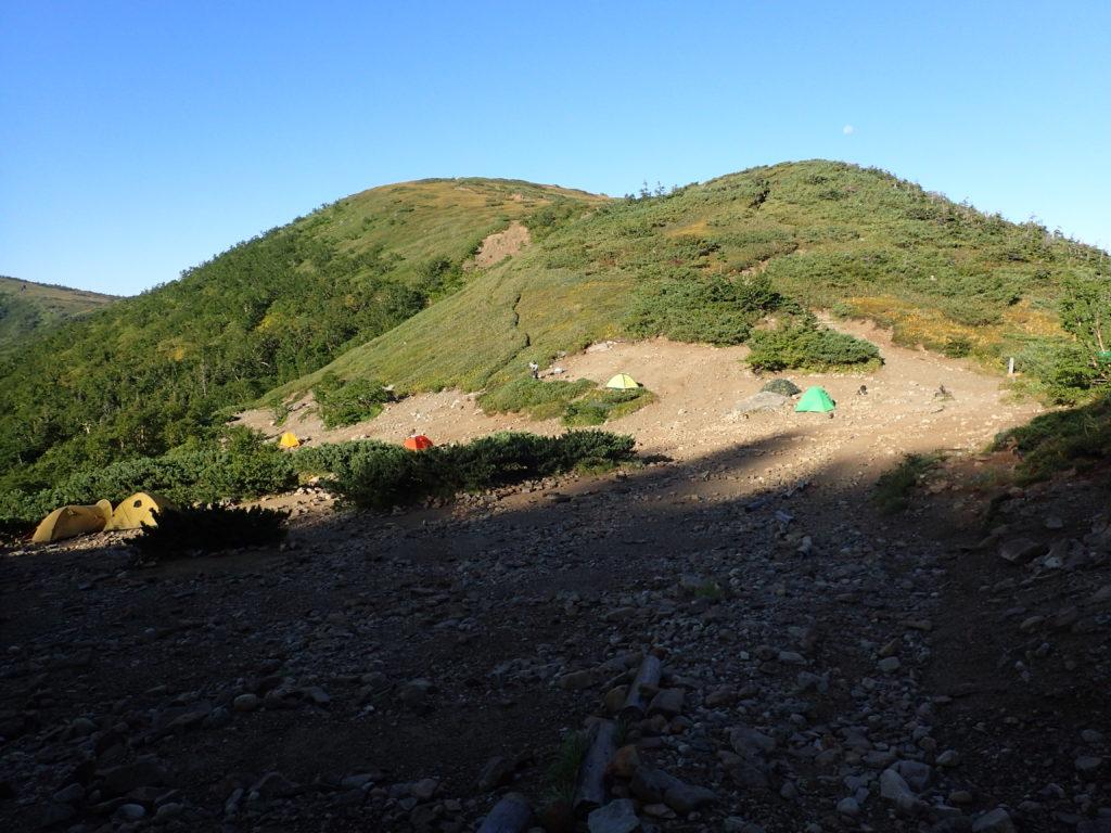 テントが張られている薬師峠キャンプ場