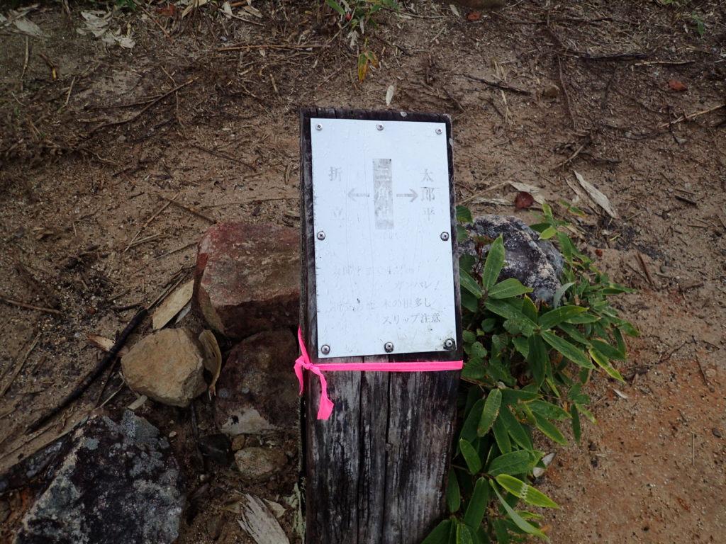 折立から太郎平へと向かう登山道の三角点