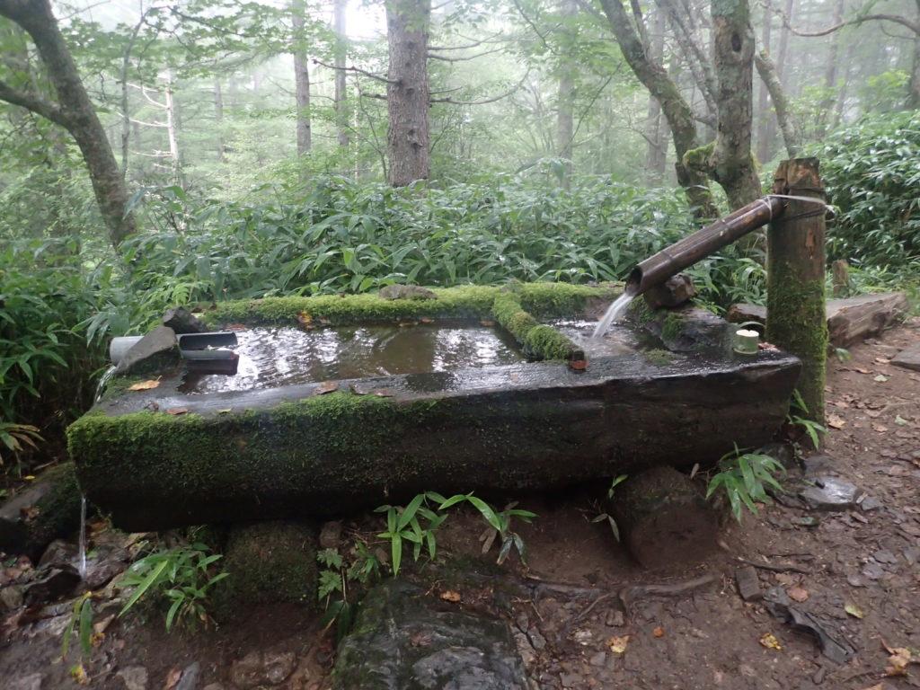 空木岳の池山小屋近くの水場