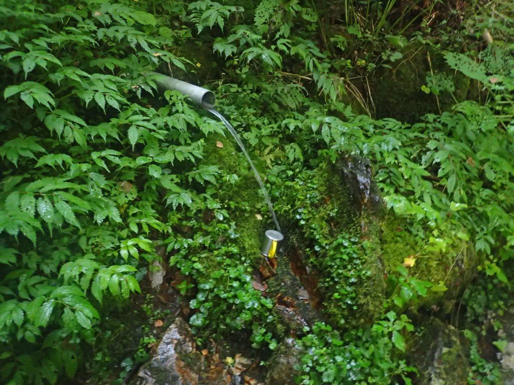 木曽駒ヶ岳の桂小場ルートのブドウの泉