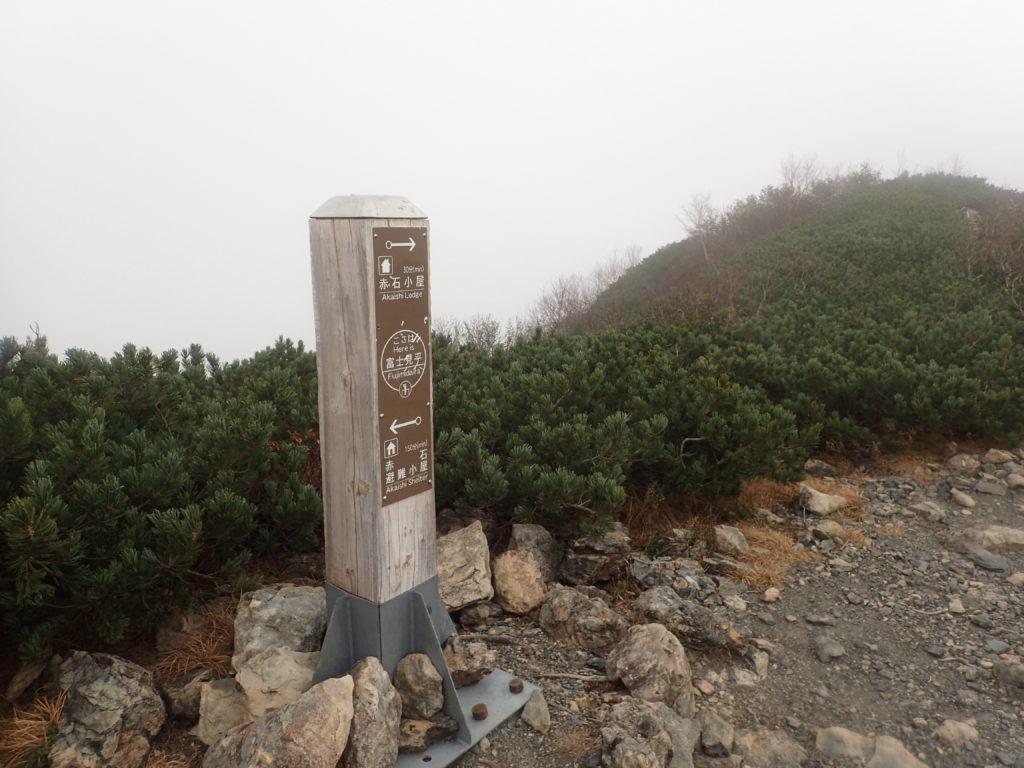 赤石岳登山道の富士見平