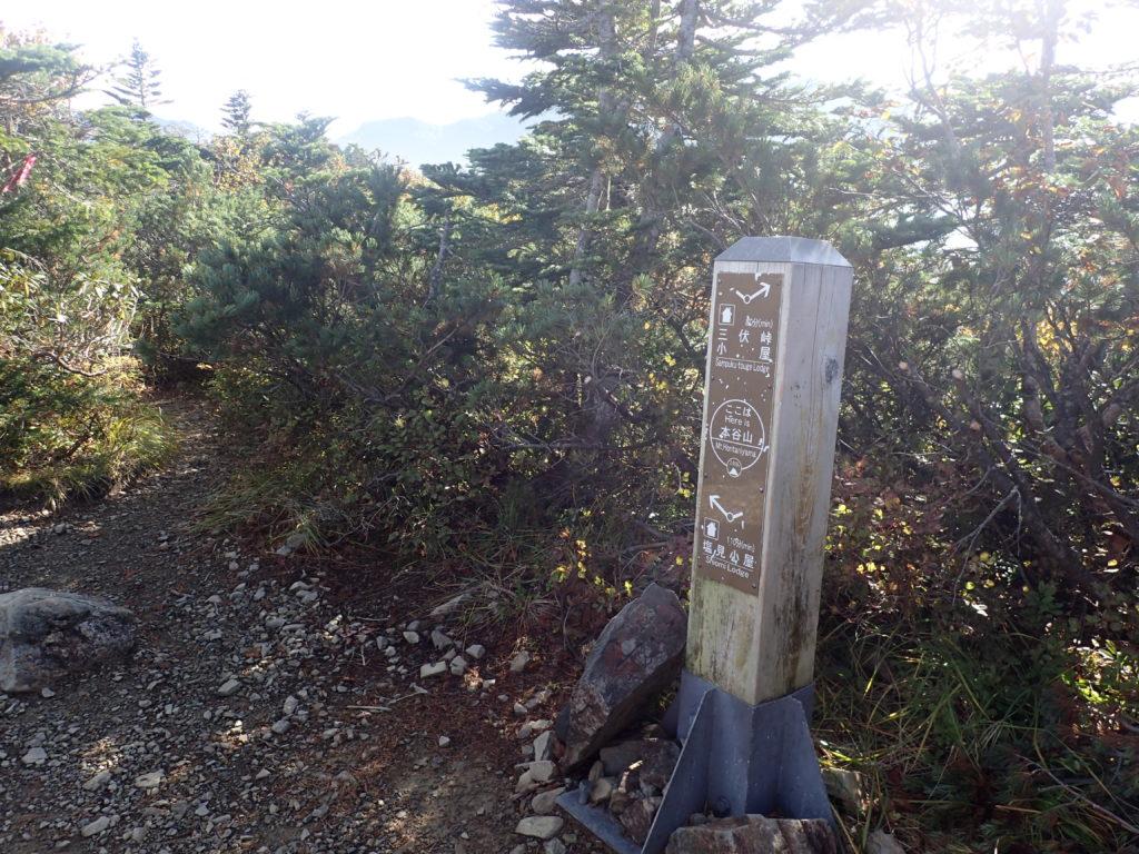 塩見岳登山道の本谷山