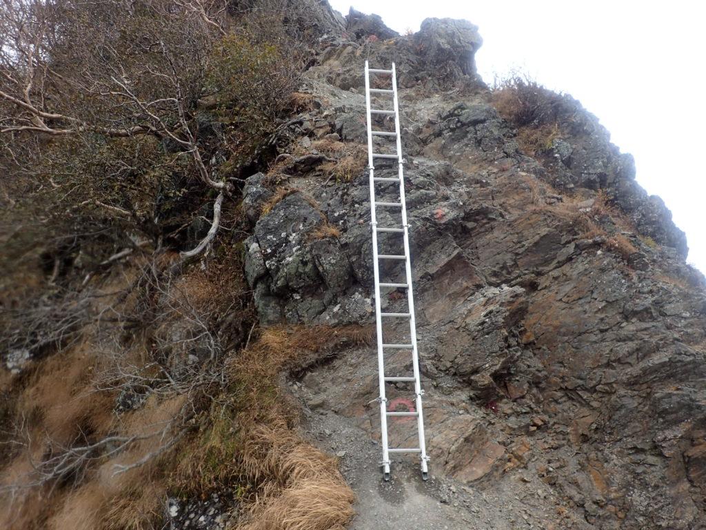 千枚岳登山道のハシゴ