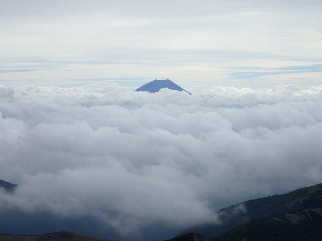 塩見岳から見る富士山
