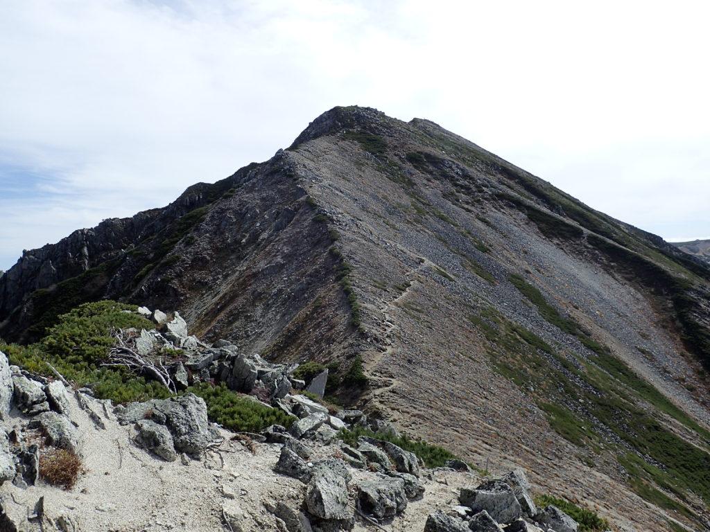 ワリモ岳方向から見た鷲羽岳